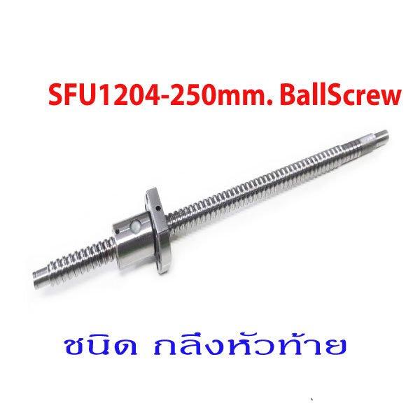 SFU1204-250mm.Ballscrew-Processing-With-NUT