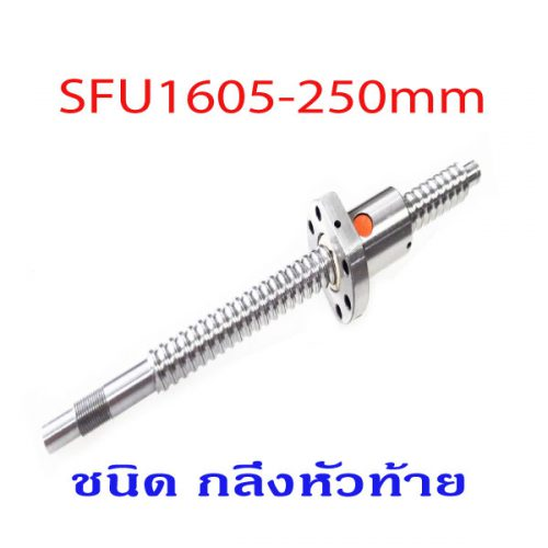 SFU1605-250mm.Ballscrew-Processing