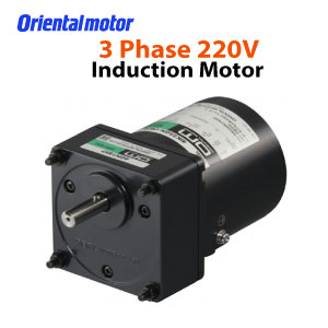 3Phase-Induction-Motor